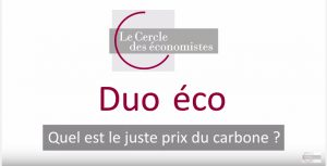 duo eco-carbone